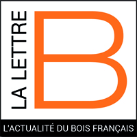 Logo La Lettre B