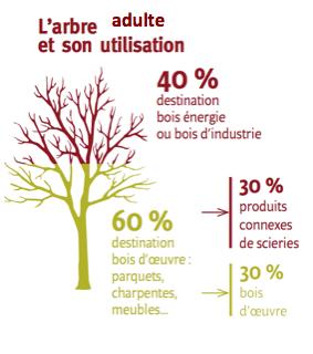 Source Forêts de France n°576