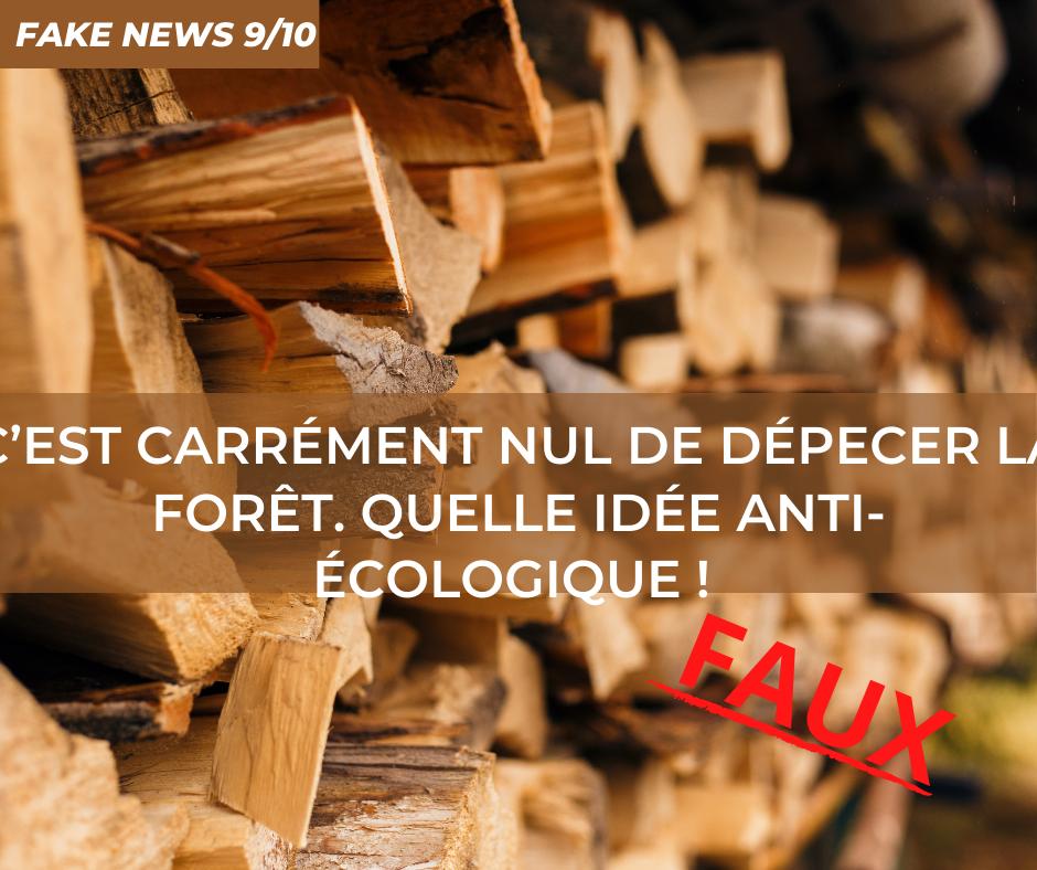 9-FakeNews